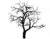 Alberi - albero spoglio 1 (cod. a10025)