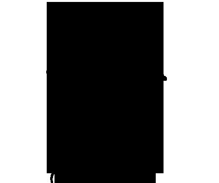 Fiori Stilizzati.Sticker Design Vi Presenta Grandi Fiori Stilizzati E Farfalle